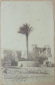 2015.6.23 195x300 Acquisition : photographies inédites de l'Algérie sous le Second Empire (séisme de Djidjelli, 1856)