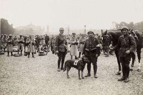 14 517501 1 [MuseumWeek] Quand le chien est le meilleur ami du soldat #TogetherMW