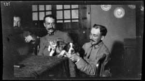 19 513274 1 300x167 [MuseumWeek] Quand le chien est le meilleur ami du soldat #TogetherMW